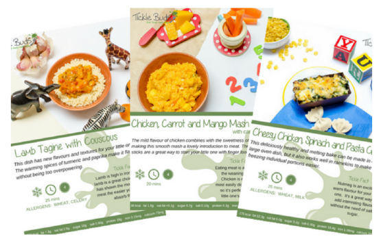 weaning-recipe-ideas1.png